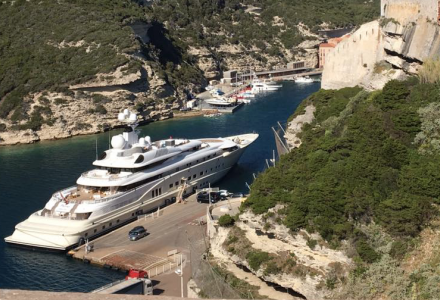 Pelorus spotted in Bonifacio, France