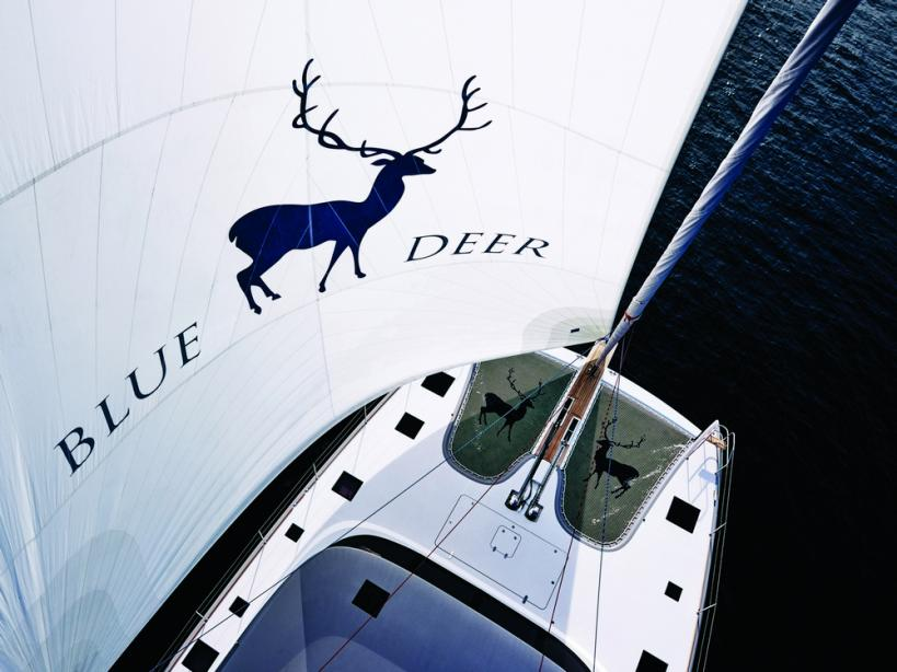 yacht Blue Deer